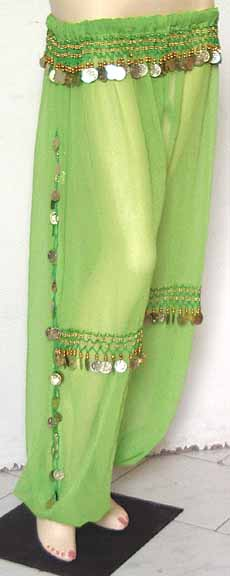 Green Harem Pant Belly Dancing Gold b